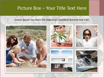 0000075575 PowerPoint Template - Slide 19