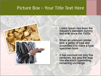 0000075575 PowerPoint Template - Slide 20