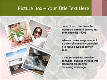 0000075575 PowerPoint Template - Slide 23