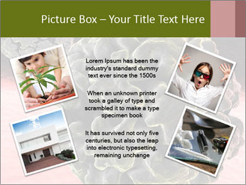 0000075575 PowerPoint Template - Slide 24