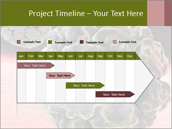 0000075575 PowerPoint Template - Slide 25
