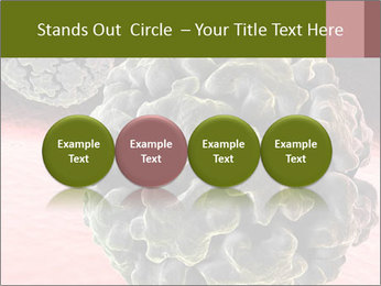 0000075575 PowerPoint Template - Slide 76