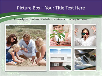 0000075587 PowerPoint Templates - Slide 19