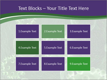 0000075587 PowerPoint Templates - Slide 68