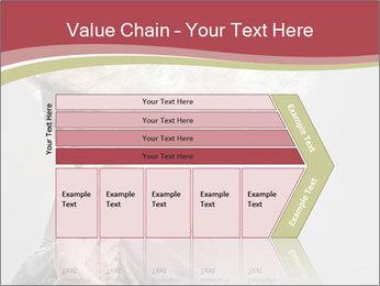 0000075588 PowerPoint Template - Slide 27