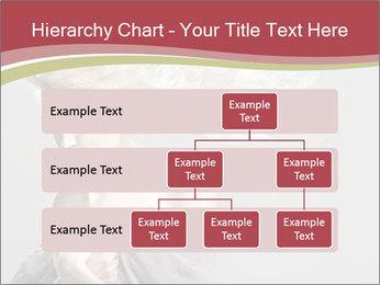 0000075588 PowerPoint Template - Slide 67
