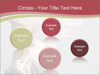 0000075588 PowerPoint Template - Slide 77