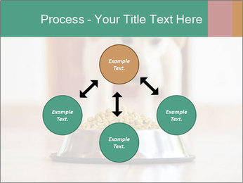 0000075593 PowerPoint Template - Slide 91