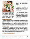 0000075602 Word Templates - Page 4
