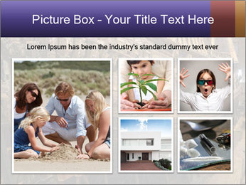 0000075606 PowerPoint Templates - Slide 19