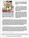 0000075610 Word Templates - Page 4