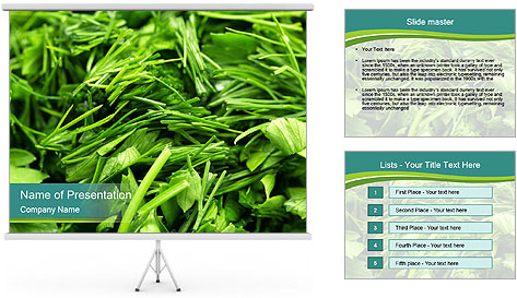 0000075618 PowerPoint Template