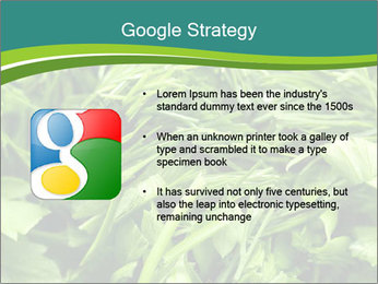 0000075618 PowerPoint Template - Slide 10
