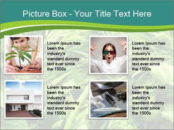 0000075618 PowerPoint Template - Slide 14