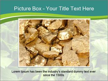 0000075618 PowerPoint Template - Slide 15
