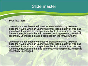 0000075618 PowerPoint Template - Slide 2