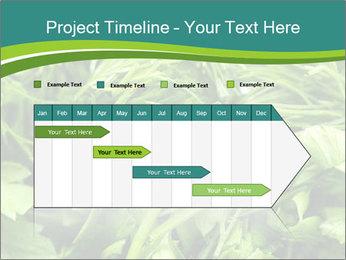 0000075618 PowerPoint Template - Slide 25