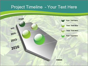 0000075618 PowerPoint Templates - Slide 26