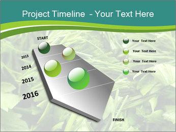 0000075618 PowerPoint Template - Slide 26