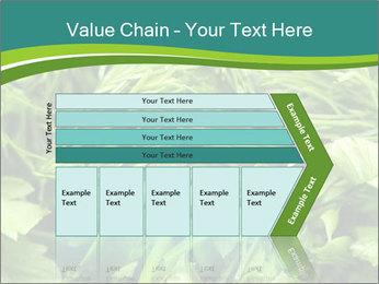 0000075618 PowerPoint Template - Slide 27