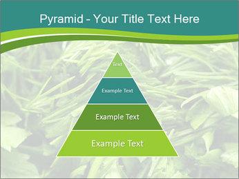 0000075618 PowerPoint Template - Slide 30