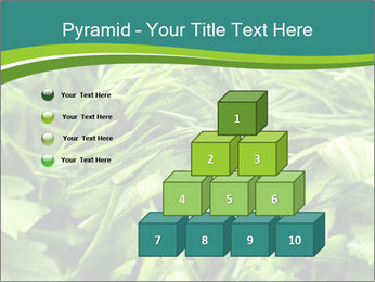 0000075618 PowerPoint Templates - Slide 31