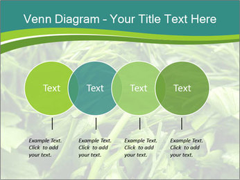 0000075618 PowerPoint Templates - Slide 32