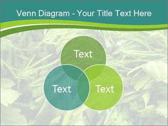 0000075618 PowerPoint Template - Slide 33