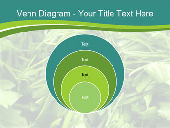 0000075618 PowerPoint Templates - Slide 34