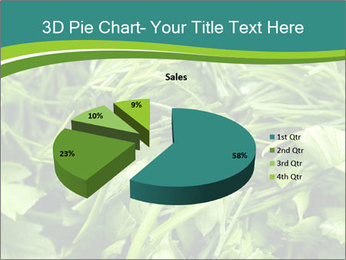 0000075618 PowerPoint Template - Slide 35