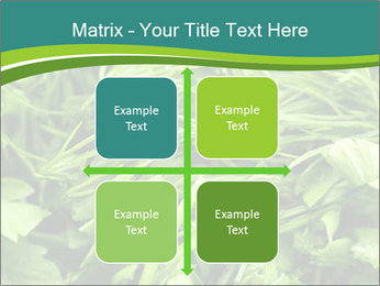 0000075618 PowerPoint Template - Slide 37