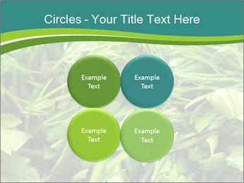 0000075618 PowerPoint Template - Slide 38