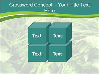 0000075618 PowerPoint Template - Slide 39