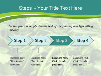 0000075618 PowerPoint Templates - Slide 4