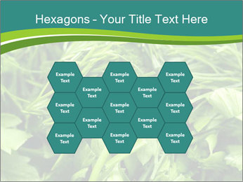 0000075618 PowerPoint Template - Slide 44