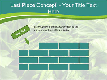 0000075618 PowerPoint Templates - Slide 46