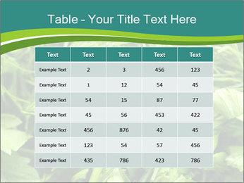 0000075618 PowerPoint Template - Slide 55