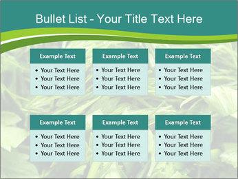 0000075618 PowerPoint Template - Slide 56