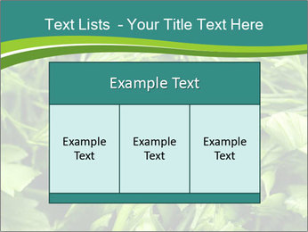 0000075618 PowerPoint Templates - Slide 59