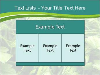 0000075618 PowerPoint Template - Slide 59