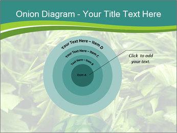 0000075618 PowerPoint Template - Slide 61