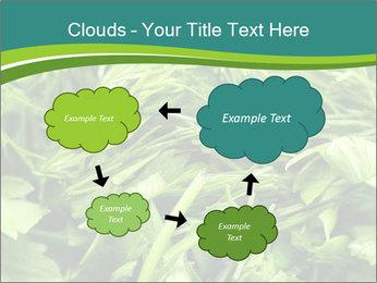 0000075618 PowerPoint Template - Slide 72