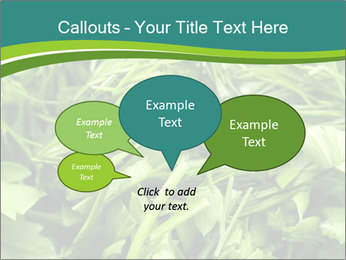 0000075618 PowerPoint Templates - Slide 73