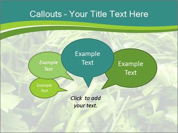 0000075618 PowerPoint Template - Slide 73