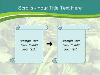 0000075618 PowerPoint Template - Slide 74
