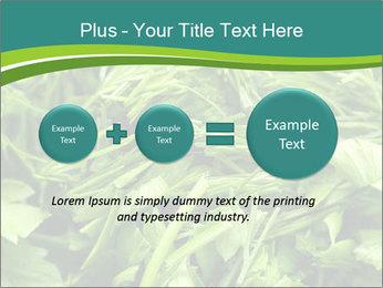 0000075618 PowerPoint Template - Slide 75