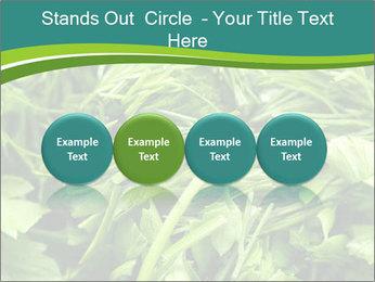 0000075618 PowerPoint Template - Slide 76