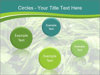 0000075618 PowerPoint Template - Slide 77