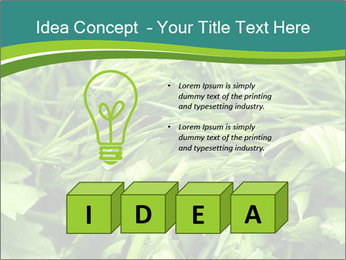 0000075618 PowerPoint Templates - Slide 80
