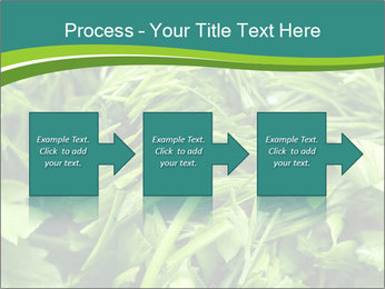 0000075618 PowerPoint Templates - Slide 88